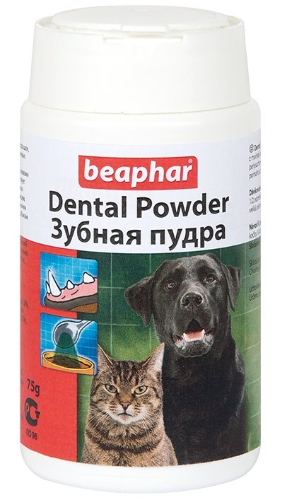 Dental Powder фото